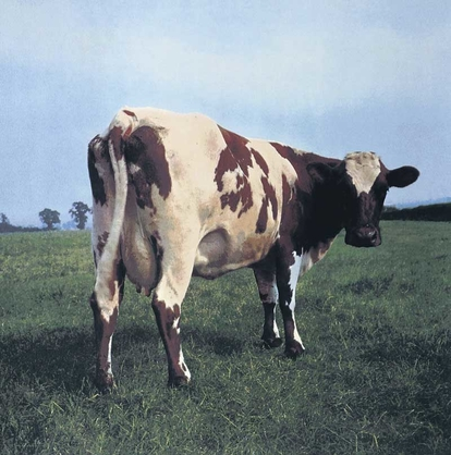 Pink Floyd Atom Heart Mother Album cover by Hipgnosis